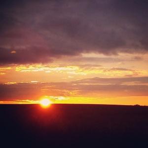 sunrest