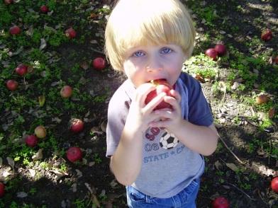 """Mmm, apples!"""