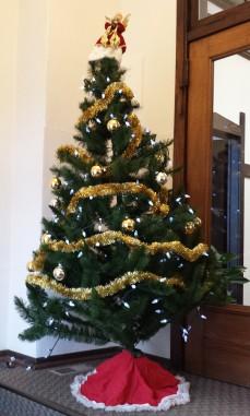 Go home, Christmas tree, you're drunk.
