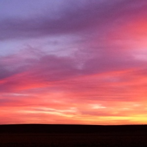 dawnrise