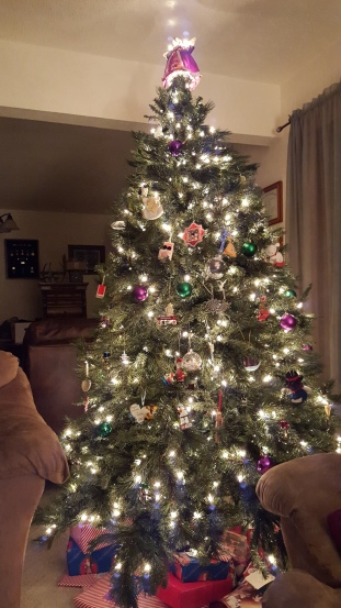 Finally got our tree up!